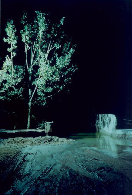 Cement Fargo, 2000