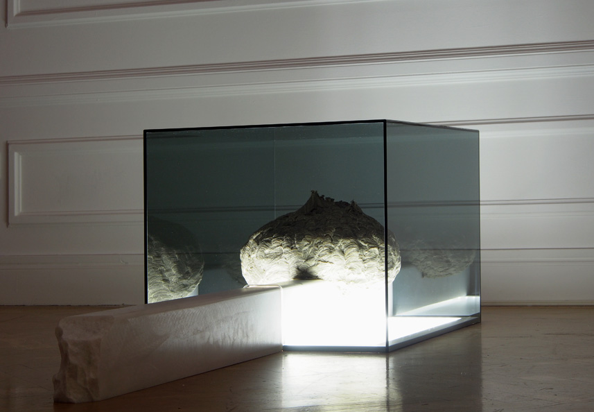 Blueville, 2013 Wasps nest, marble beam, glass cover, LED-panel 42 x 45 x 180 cm